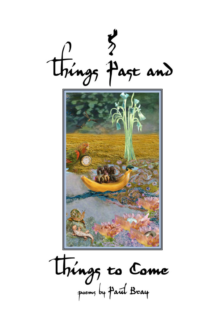 Things Past and Things to Come by Paul Bray
