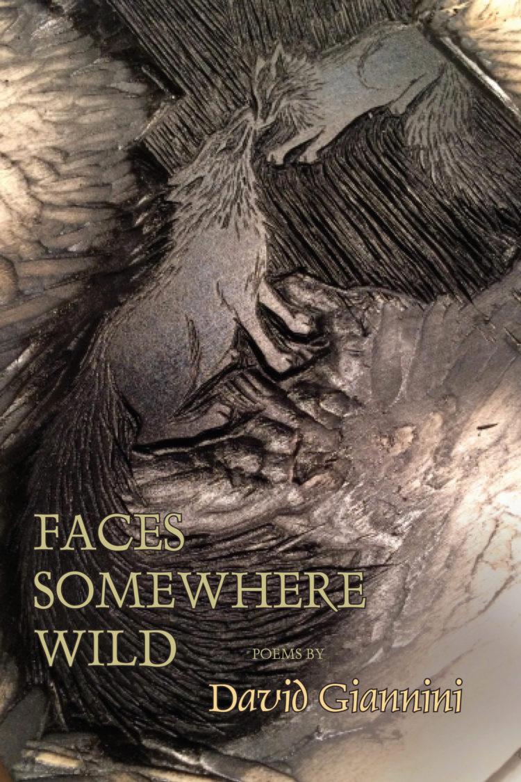 Faces Somewhere Wild by David Giannini