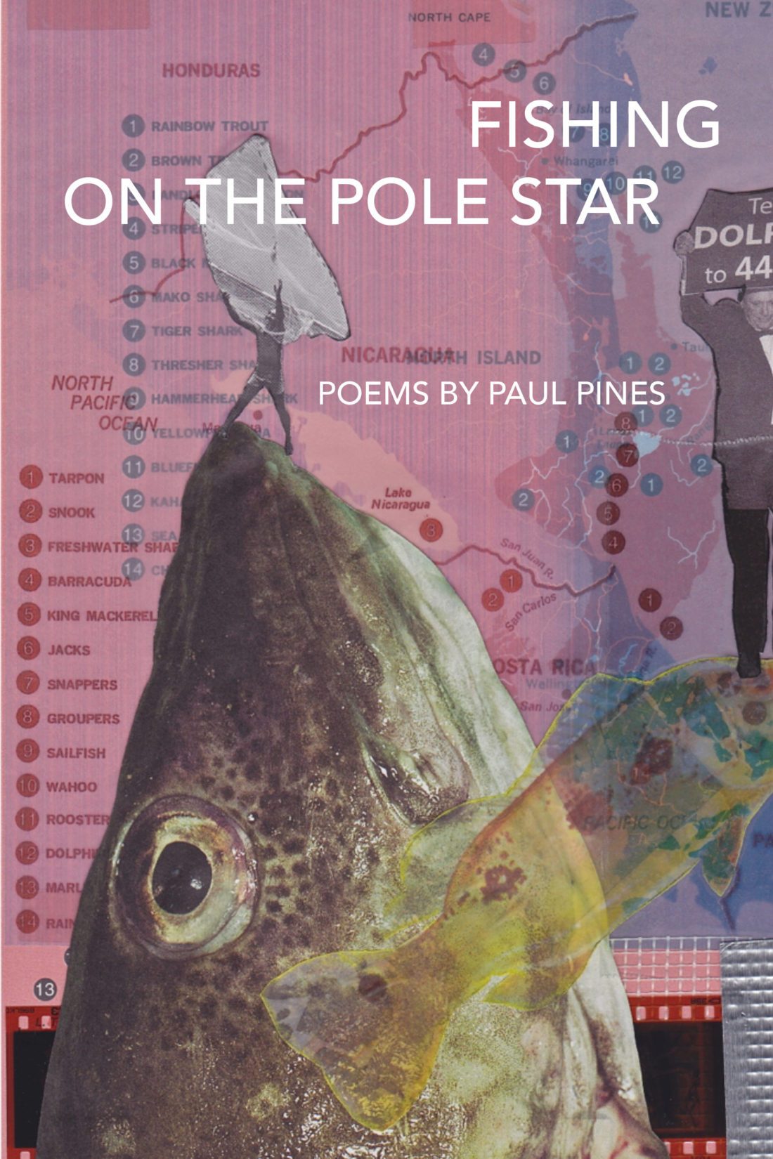 Fishing on the Pole Star by Paul Pines