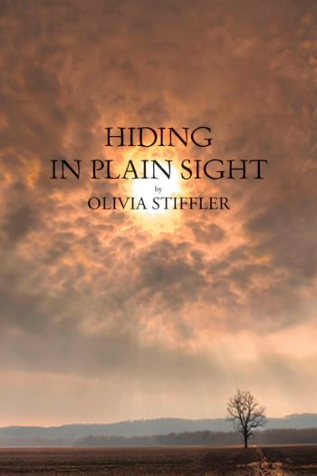 Hiding in Plain Sight by Olivia Stiffler