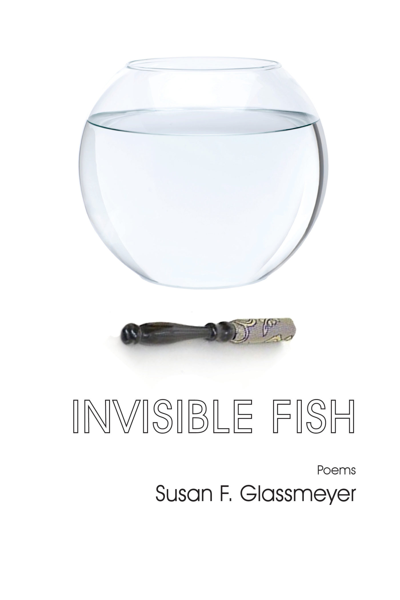 cover of Invisible Fish