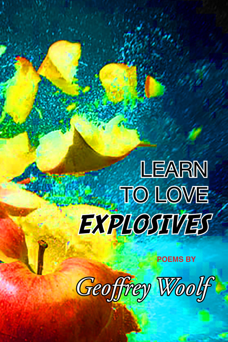 Learn to Love Explosives by Geoffrey Woolf