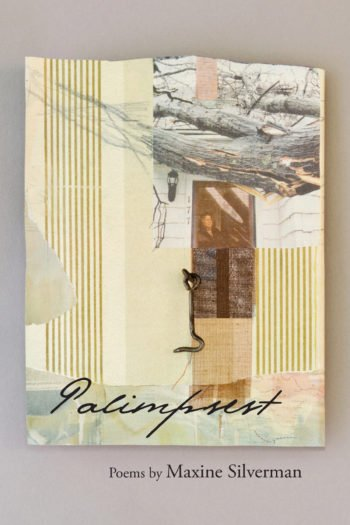 Palimpsest by Maxine Silverman