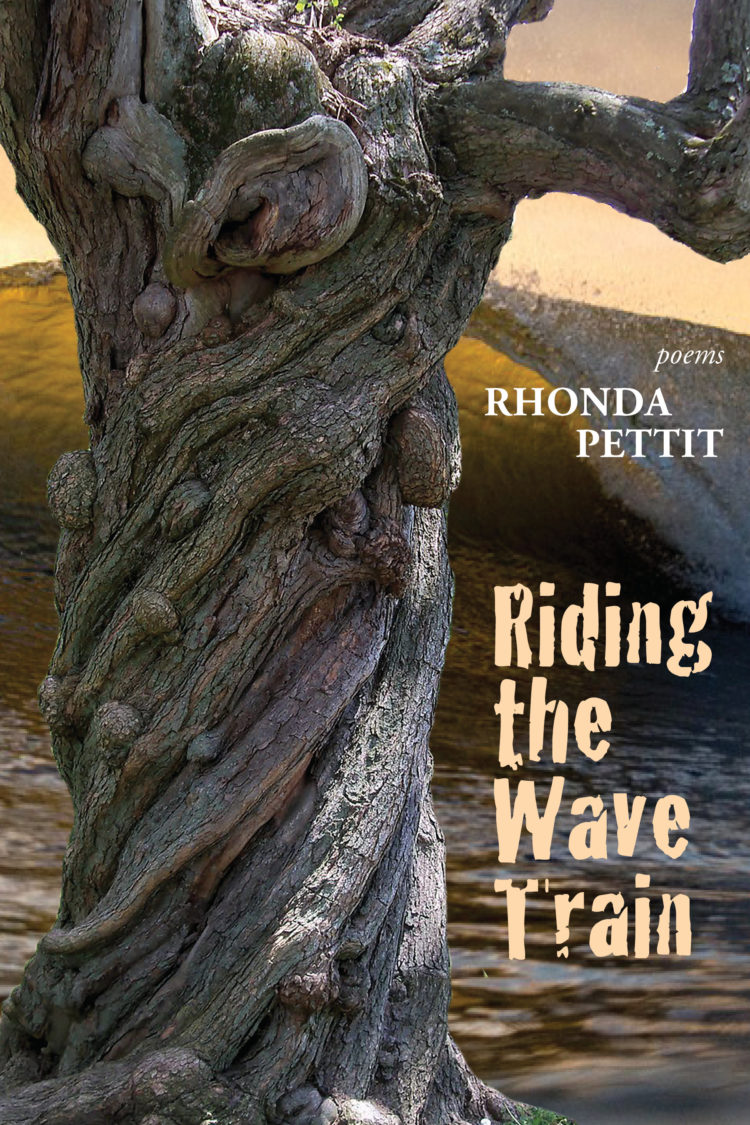Riding the Wave Train by Rhonda Pettit