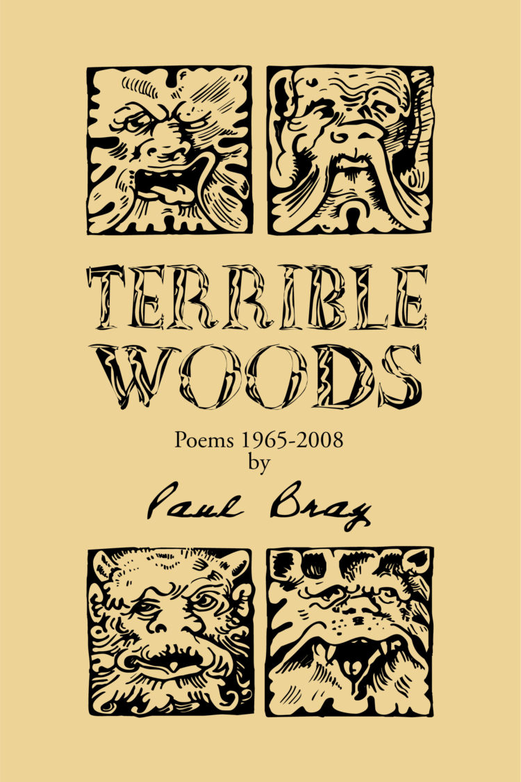 Terrible Woods by Paul Bray