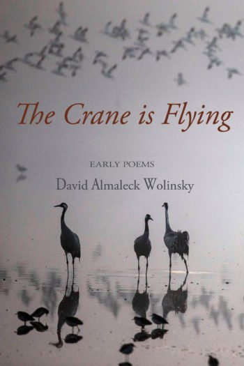 The Crane is Flying by David Almaleck Wolinsky