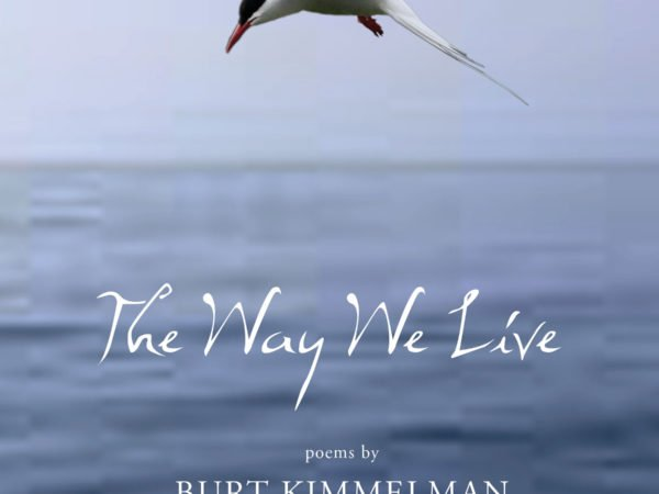 The Way We Live by Burt Kimmelman