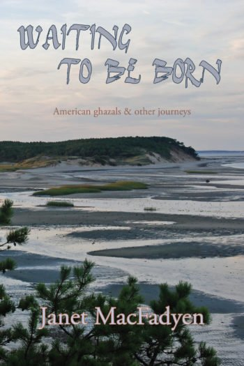 Waiting to Be Born by Janet MacFadyen