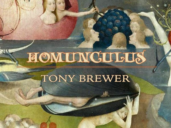 Homunculus by Tony Brewer