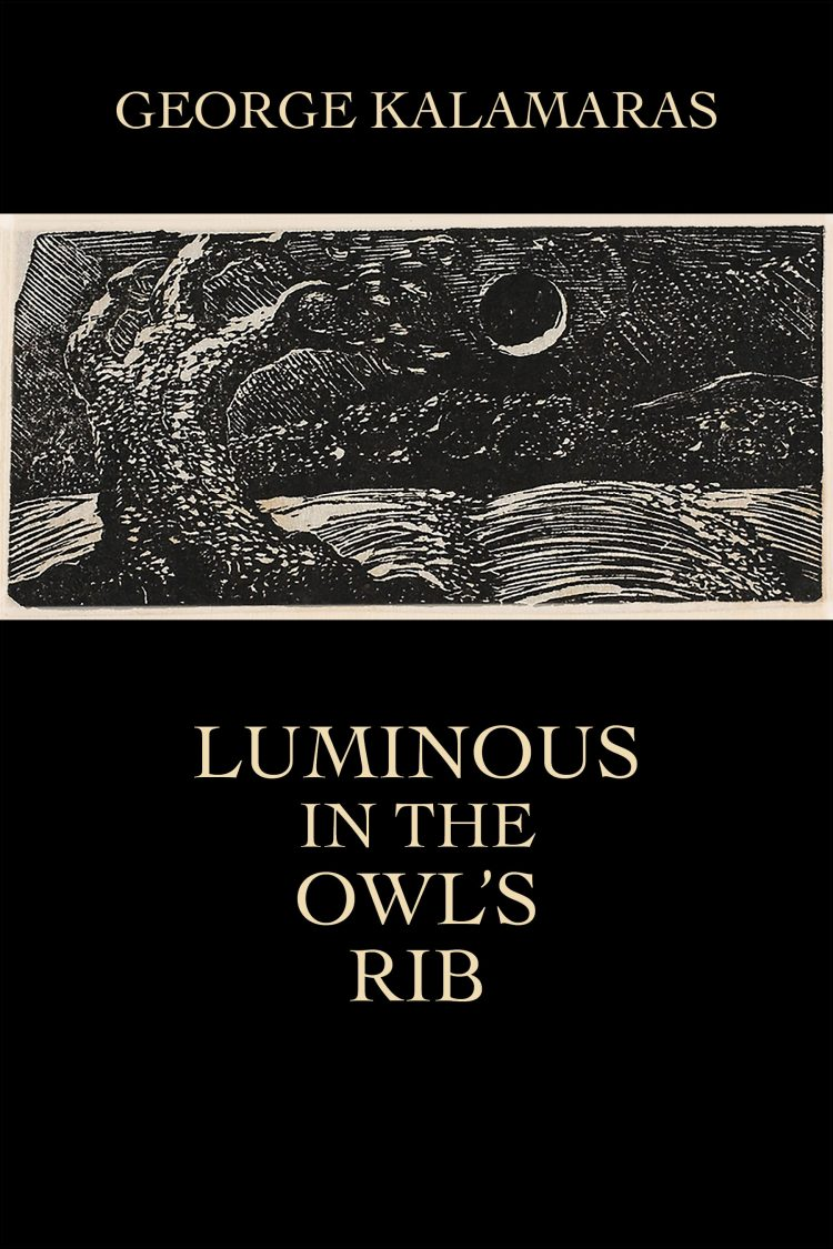 Luminous in the Owl's Rib by George Kalamaras