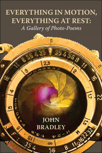 Everything in Motion, Everything at Rest by John Bradley
